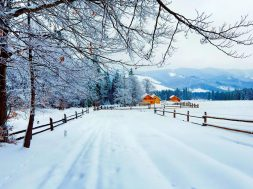 winter-in-countryside