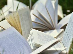 books-2241635_640