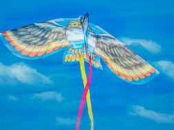 kite-4422105_640